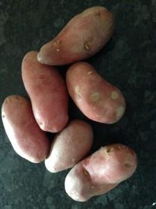 rozeval aardappel